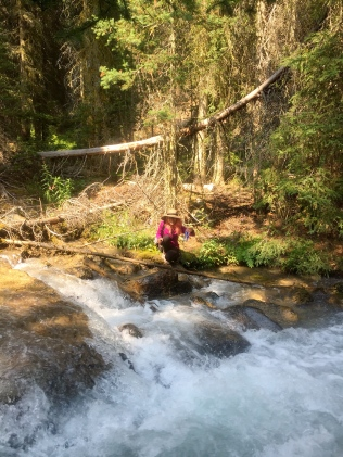 lou hike (3)